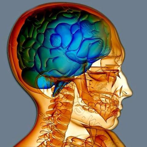 Внутричерепное давление при травме головы